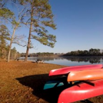 Kayaking in South Carolina on the Pee Dee