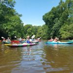 Kayaking in South Carolina - River Rats Canoe Rentals