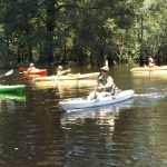 Kayaking in South Carolina - Swamp Fox Adventures